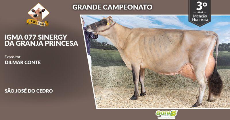 1a Etapa Sani Quimica do 5. CNRJ 2020 - Grandes Campeonatos